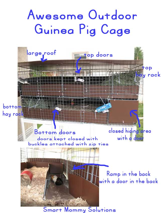 outdoor-guinea-pig-cage-features